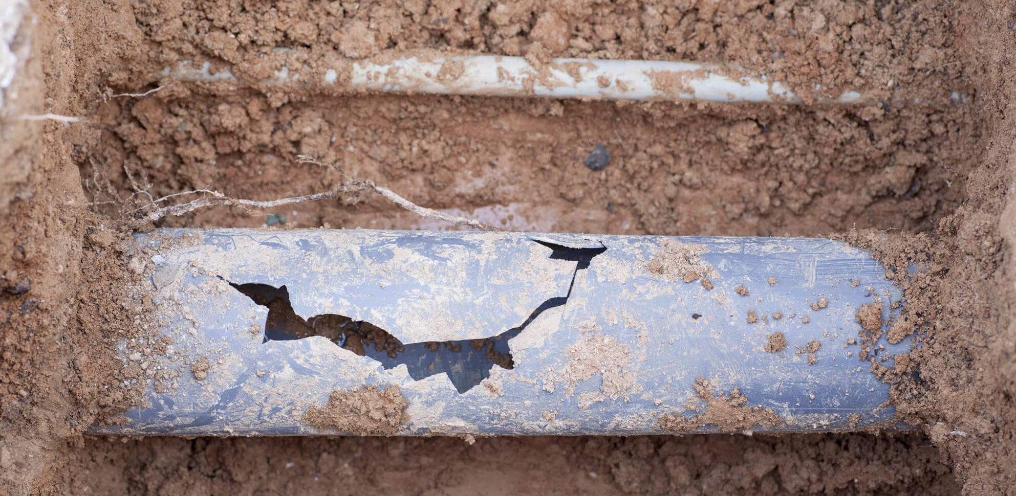 How To Tell If You Have A Broken Sewer Line Eyman